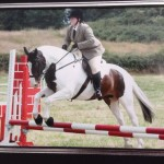 Very beautiful Ned and Chez jumping!